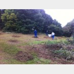 Hay Raking in Gleadless Valley
