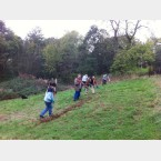 Hay raking in the Gleadless Valley