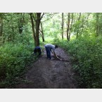 Footpath work at Clough Field Woods